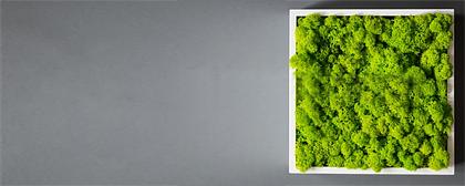Verde Stabilizzato